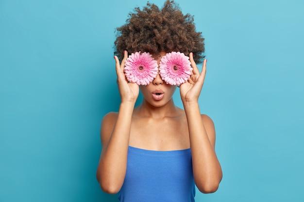 Retrato de uma jovem surpresa com cabelo afro encaracolado segurando gerberas rosa na frente dos olhos mantém a boca aberta de maravilha, usa vestido poses contra a parede azul