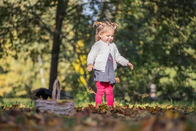 Retrato de uma linda menina adorável brincando nas folhas escaldantes no parque outono em um dia ensolarado