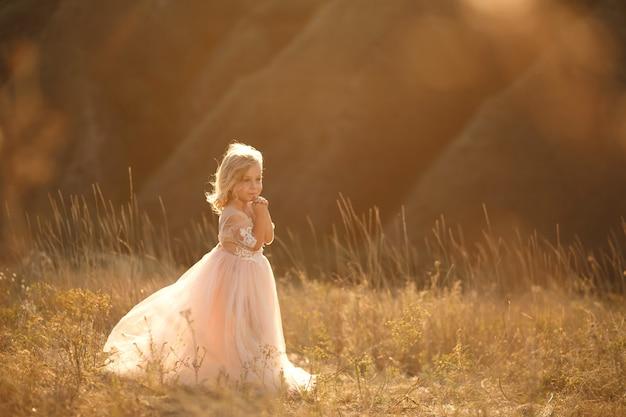 Retrato de uma linda menina princesa em um vestido rosa. posando em um campo ao pôr do sol