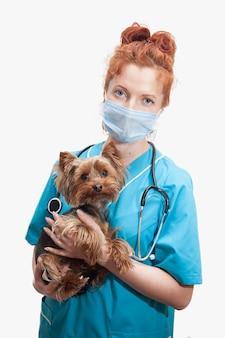 Retrato de uma médica veterinária em uniforme médico com cachorro nas mãos em fundo branco isolado