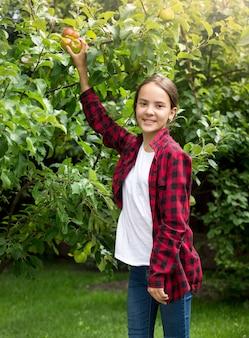 Retrato de uma menina feliz e sorridente com uma camisa quadriculada vermelha colhendo maçãs no jardim