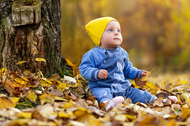 Retrato de uma menina pequena sentada em um tapete de folhas de outono perto de uma árvore no parque