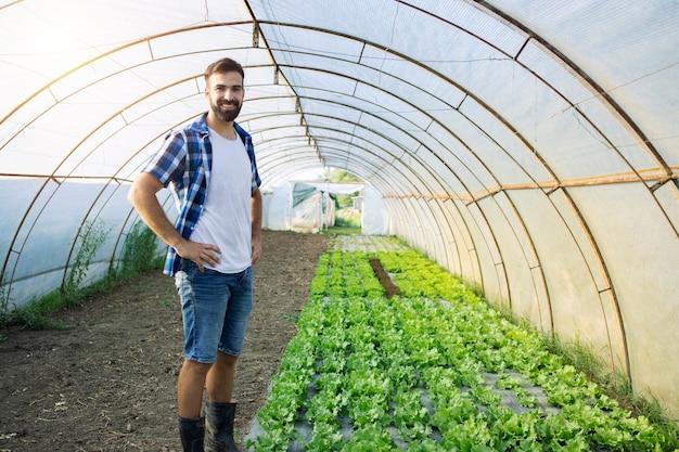 Retrato do agricultor trabalhador na estufa por vegetais orgânicos.