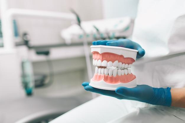 Retrato do dentista fêmea. ela que está em seu escritório do dentista.
