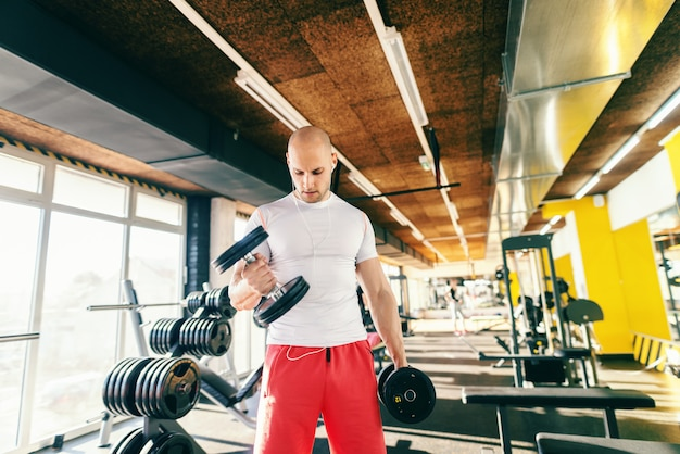 Retrato do fisiculturista careca no sportswear usando fones de ouvido e olhando para baixo, levantando halteres em pé no ginásio.