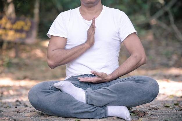 Retrato do homem asiático que faz a pose de tai chi no parque.