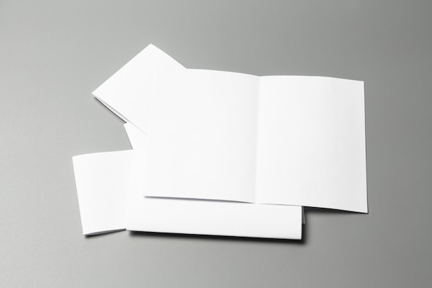 Retrato em branco a4. revista brochura isolada em cinza