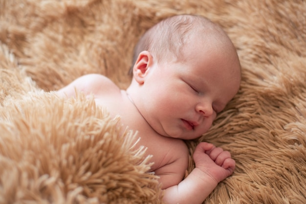 Retrato lacônico de um lindo bebê recém-nascido deitado com os olhos fechados e dormindo sobre o cobertor macio e fofo
