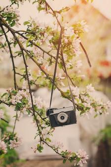 Retro velho a câmera trava em uma macieira em dia ensolarado de primavera