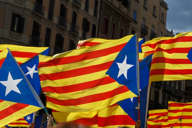 Reunir apoio à independência da catalunha durante o dia nacional