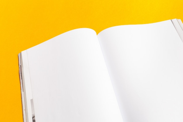 Revista ou catálogo