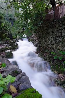 Riacho de água cercado por árvores e plantas