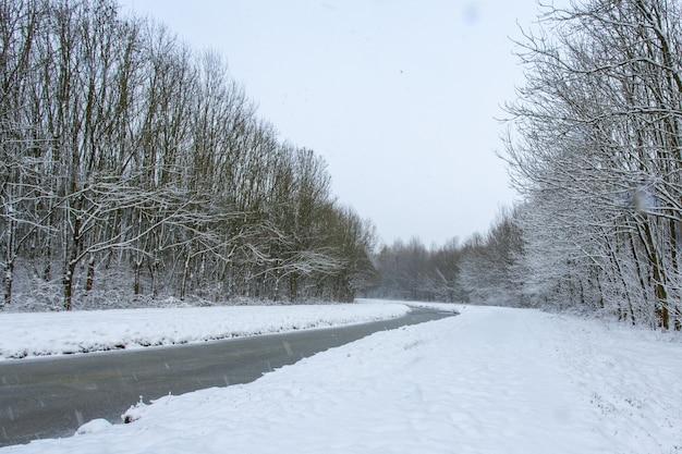 Riacho de água no meio de campos nevados com árvores cobertas de neve