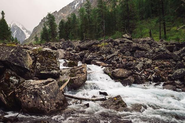 Riacho de montanha selvagem com grandes pedras