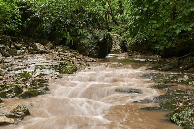 Riacho lamacento após chuva em uma floresta subtropical, a água fica turva em movimento
