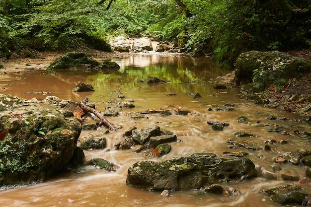 Riacho rochoso lamacento após chuva em uma floresta subtropical