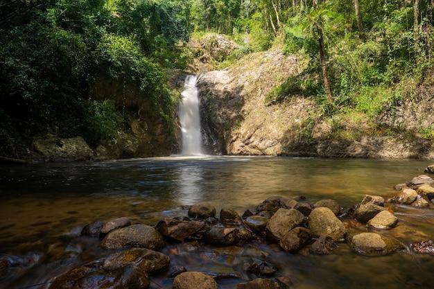 Riachos da natureza na floresta da floresta no norte da tailândia