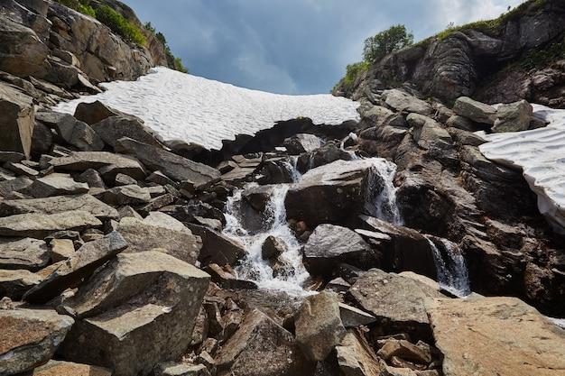 Riachos de montanha fabulosos, vegetação exuberante e flores ao redor
