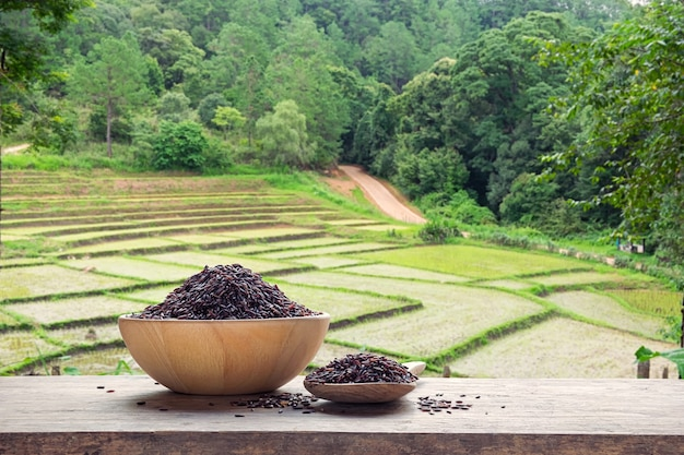 Riceberry ou arroz não cozido em uma tigela de madeira e colher de pau com o campo de arroz em terraços