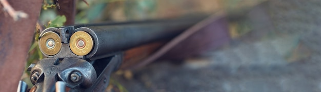 Rifle de caça na grama. o início da temporada de caça está aberto. para faisões e pássaros.