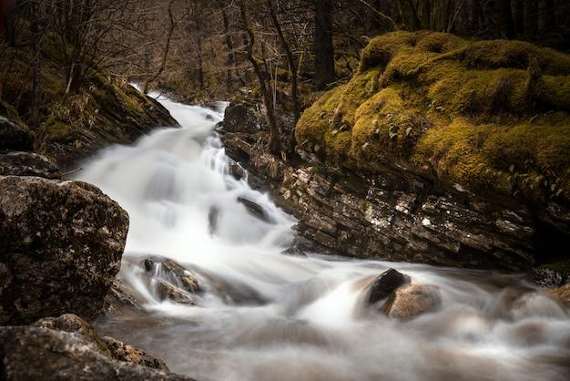 Rio cercado por rochas cobertas por musgos e árvores em uma floresta durante o outono