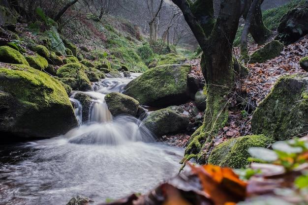 Rio da floresta com cachoeira nas montanhas de wicklow, ireand.