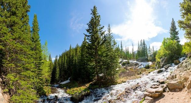 Rio da montanha contra panorama de bosques verdes