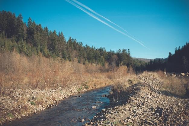 Rio da montanha no prado