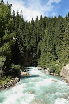 Rio da montanha.