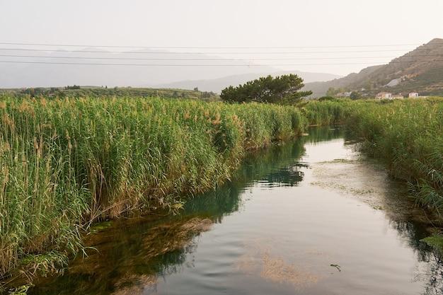 Rio de montanha com margens cobertas de vegetação em creta, com montanhas nebulosas ao fundo.