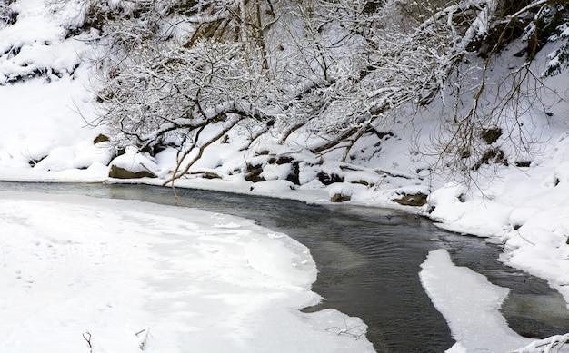 Rio de montanha de inverno com árvores cobertas de geada e arbustos à beira do rio