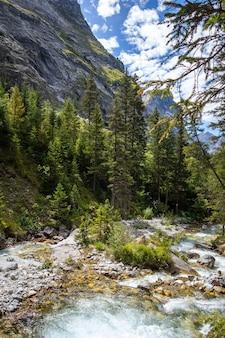 Rio de montanha no vale alpino do parque nacional de vanoise, savoie, alpes franceses