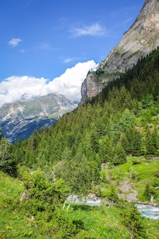 Rio doron no vale alpino do parque nacional de vanoise, savoie, alpes franceses