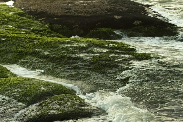 Rio fluindo através das rochas coberto de musgo verde