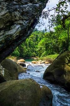 Rio na floresta tropical da selva, khao sok, tailândia