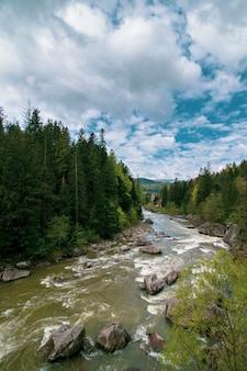Rio nas montanhas. paisagem dos cárpatos.