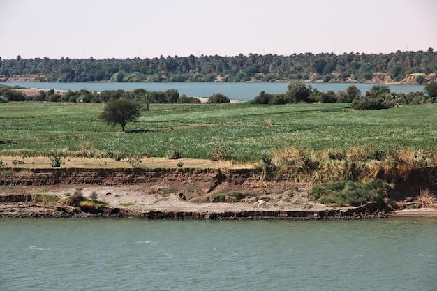 Rio nilo, dongola antigo no sudão, deserto do saara, áfrica