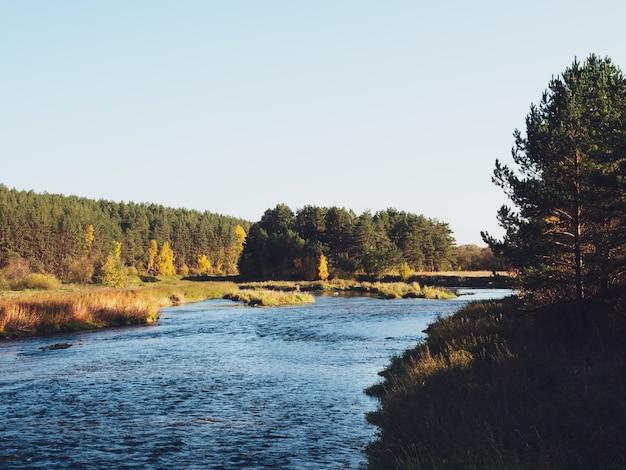 Rio no outono. o rio e a pitoresca floresta de outono.