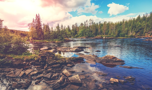 Rio rochoso de montanha. bela natureza da noruega