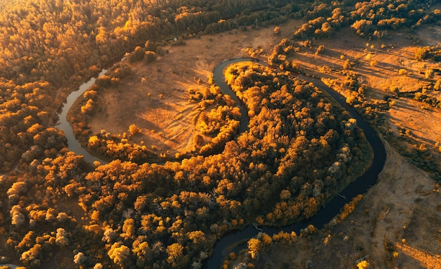 Rio sinuoso com curvas em zigue-zague na floresta de outono no início da manhã ao amanhecer, vista aérea