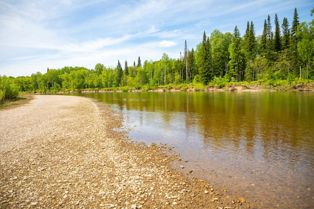 Rio taidon fluindo pelas florestas de taiga sul da sibéria, rússia