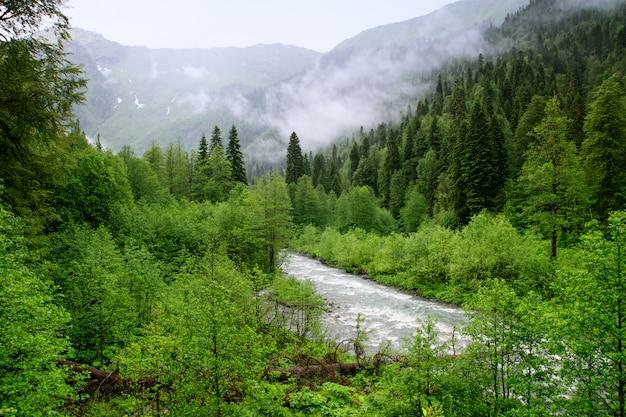 Rios da montanha da abkhazia