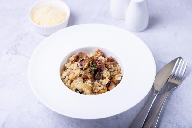 Risoto com cogumelos porcini. prato tradicional italiano. close-up, orientação horizontal.
