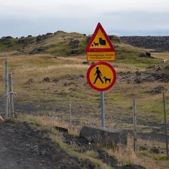 Roadsigns sobre ovelhas e cães na frente de pastagens