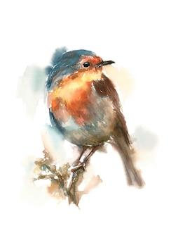 Robin sentada em um galho, ilustração infantil em aquarela