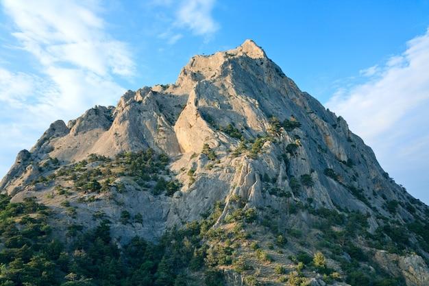 Rocha com árvores coníferas no fundo do céu azul (rocha