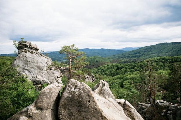 Rochas nas montanhas entre a floresta