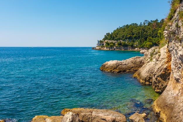 Rochosa beira-mar do mar adriático. uma bela beira-mar com pedras amarelas e árvores verdes.