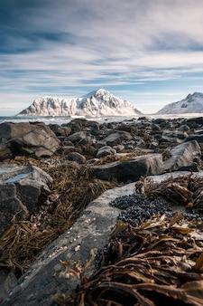 Rochoso com grama no litoral com montanha de neve