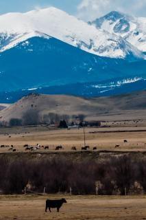 Rochoso montanhas montana